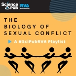 Spotify Playlist Sexual Conflict
